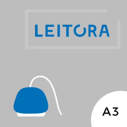 Azul_Leitora